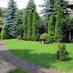 Dawid W. - W ogrodzie, przed domem Śrem