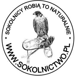 Sokolnictwo.pl - Dezynsekcja i deratyzacja Gdańsk