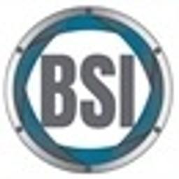 BSI Detektywi - Prywatny Detektyw - Biuro Służb Informacyjnych - Windykacja Bydgoszcz
