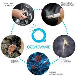 OZONE - Dezynsekcja i deratyzacja Pozna艅