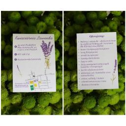 Kwiaciarnia Lawenda - Świąteczne Paczki Poddębice