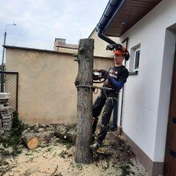 Mateusz Gańko - Usługi Ogrodnicze Dębe Wielkie