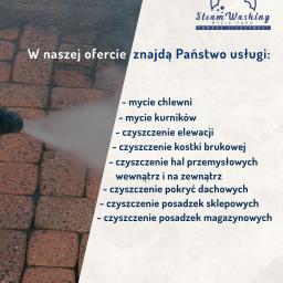 Corona Tomasz Cieszyński - Mycie dachów Lubawa