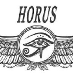 Horus Robert Górski - Prywatni Detektywi Gdynia