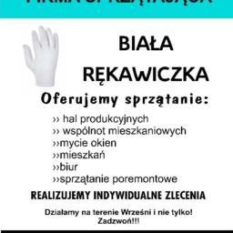 Biała Rękawiczka - Okna Bez Smug Września