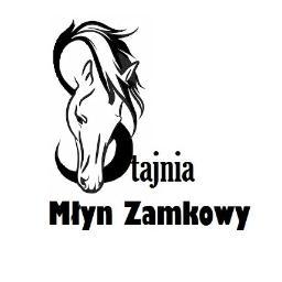 Stajnia Młyn Zamkowy - Stadniny i jazda konna Dąbrówno
