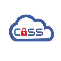 CASS Sp. z o.o. - Zarządzanie projektami IT Chorzów