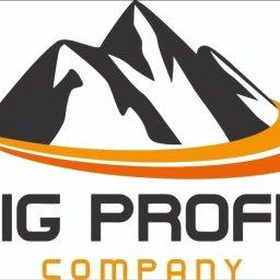 BIG PROFIT COMPANY sp.z.o.o. - Us艂ugi podatkowe W艂oc艂awek