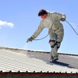Alpine Paint - Renowacja Dachu Elbląg