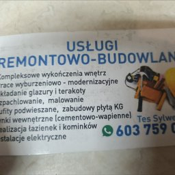 Usługi remontowo budowlane Tes Sylwester - Płyta karton gips Janów Lubelski