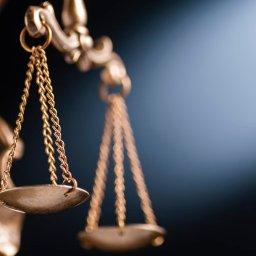 Praktyka Kancelarii świadczy usługi dla klientów indywidualnych jak i podmiotów gospodarczych, zaś koncentruje się na sprawach z zakresu następujących dziedzin prawa: -karnego; -rodzinnego; -cywilnego; -administracyjnego; -gospodarczego i prawa pracy.