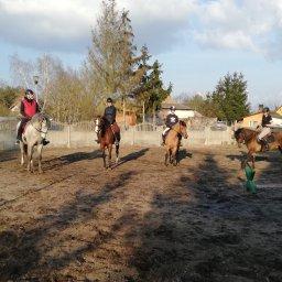 Stajnia Ługi Ujskie - Stadniny i jazda konna Ługi ujskie