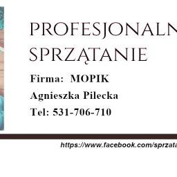 Mopik Agnieszka Pilecka - Czyszczenie Elewacji Łódź