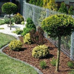 Projektowanie ogrodów Ząbkowice Śląskie 2