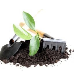 Ogrody - Odśnieżanie dróg i placów Nieporęt