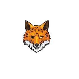 Fox Security Sp. z o.o. - Detektyw Katowice