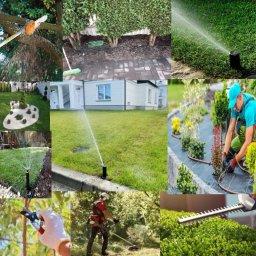Nawogrodów - Projektowanie Ogrodów Pleszew