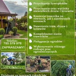 Nowacki Garden, Usługi ogrodnicze, pielęgnacja Piotr Nowacki - Projektowanie Ogrodów Skoki