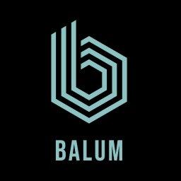 Balum - Bramy wjazdowe Leśna