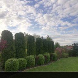 KRYS-FACH Usługi Ogrodnicze Budowlane - Ogrodnik Dynów
