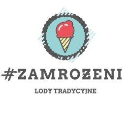 Zamrożeni.com - Sklep Gastronomiczny Zabrze