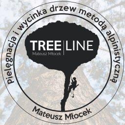 TREE LINE - PIELĘGNACJA I WYCINKA DRZEW METODĄ ALPINISTYCZNĄ - Odśnieżanie Dachów Andrychów