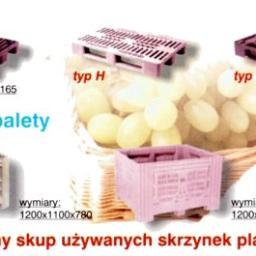 Plastbox Lublin Raus Mariusz - Agencja interaktywna Lublin