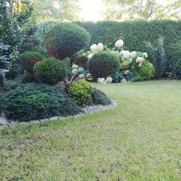 Spoko ogrody - Projektowanie Ogrodów Zimowych Trąbki Wielkie