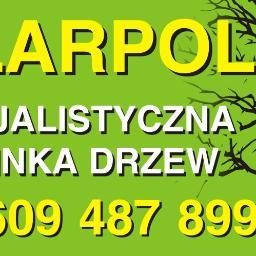 F.U. PILARPOL - Ogród Zimowy na Tarasie ZAWIERCIE