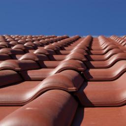 Dachy Premium - Mycie Dachów Żórawina