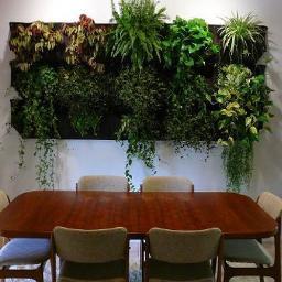 GreenSystem - systemowe ogrody ścienne - Ogród i rośliny Mirków