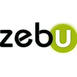 Zebu - Pozycjonowanie stron Poznań