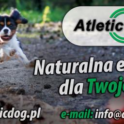 ATLETIC DOG POLSKA - Zoologiczne GĄBIN