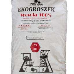 Ekogroszek Katowice 11