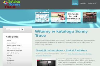 Sonny Trace. Jolanta Miedzińska - Doradca podatkowy Warszawa