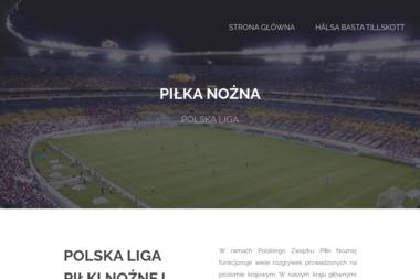 Korner. Sp.j. K. Binkowski, R. Ignatowski - Systemy i usługi Bydgoszcz