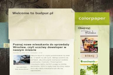 Budpur. Sp. z o.o. Producent stolarki okiennej PCV - Okna aluminiowe Bydgoszcz
