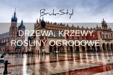 Bruk-styl - Kostka betonowa Kraków