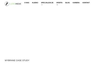 Lizard Media - Programista Bielsko-Biała