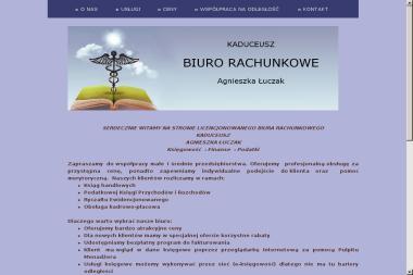 """Firma Handlowo-Usługowa """"KADUCEUSZ"""" Ireneusz Dudek - Wyburzenia Gorlice"""
