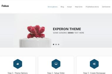 Focus holding - Domy z bali Warszawa