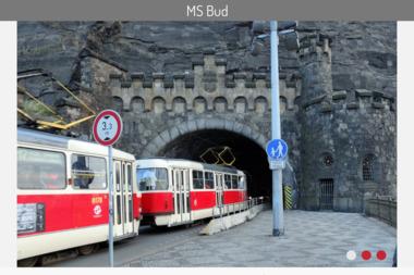 MS BUD uslugi budowlane - Elewacje Strachoslaw