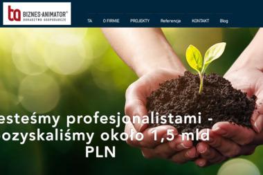 Biznes-Animator Sp. z o.o. sp. k. - Biznes plany, usługi finansowe Poznań