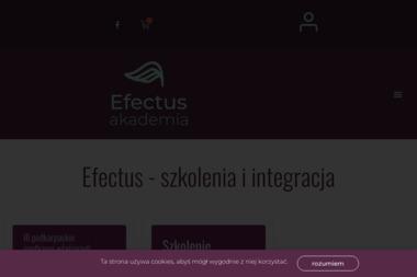 EFECTUS - Mycie okien w firmie Bydgoszcz