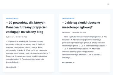 Adesso-Media marketing internetowy - Pozycjonowanie stron Bojanów