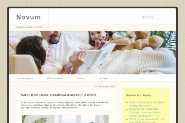 Biuro Inicjatyw Gospodarczych Novum Sp. z o.o. - Ocieplanie budynków Zabrze