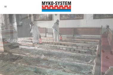 Mykosystem - osuszanie, odgrzybianie budynków, ekspertyzy mykologiczne - Ocieplanie Pianką Toruń Grudziądz Bydgoszcz Włocławek Olsztyn Gdańsk Brzozówka