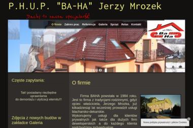 "P.H.U.P. ""BA-HA"" Jerzy Mrozek - Murowanie ścian Żory"