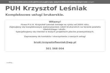 Przedsiębiorstwo Usługowo-Handlowe Krzysztof Leśniak - Wyburzenia Oleśnica