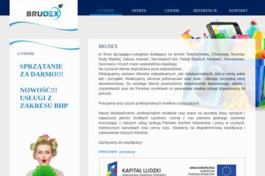 Firma Sprzątająco-Usługowa BRUDEX - Altany Świętochłowice